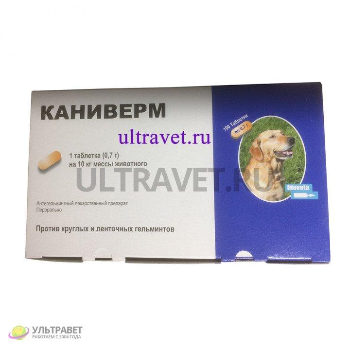 Каниверм таблетки (100 шт.)