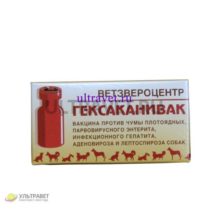 Гексаканивак - вакцина против чумы плотоядных