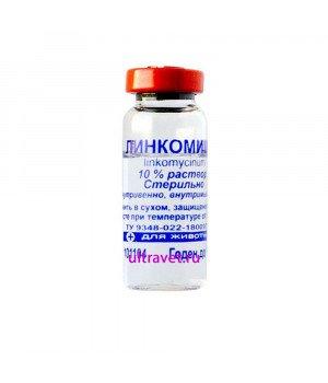 Линкомицин 10% инъекционный раствор