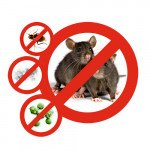 Уничтожение: тараканов, мух, крыс, клопов, вшей, мышей, кротов