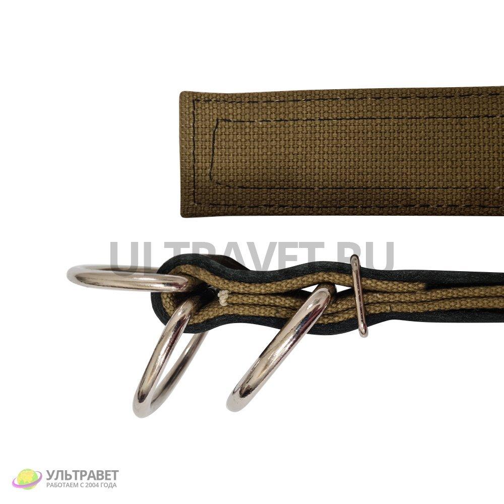 Ошейник для КРС Ультра брезентовый усиленный пряжка полукольца , 1,05 м