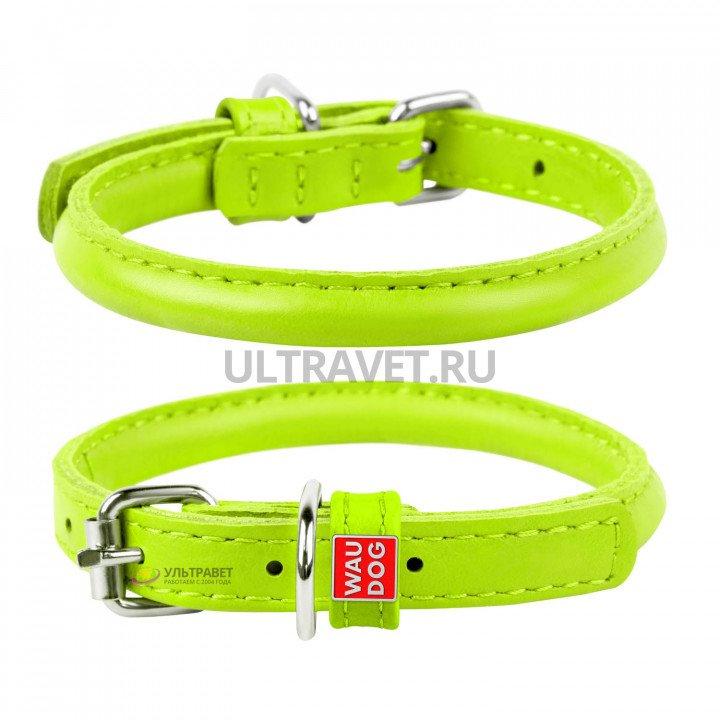 Ошейник WAUDOG Glamour круглый для длинношерстных собак, зеленый