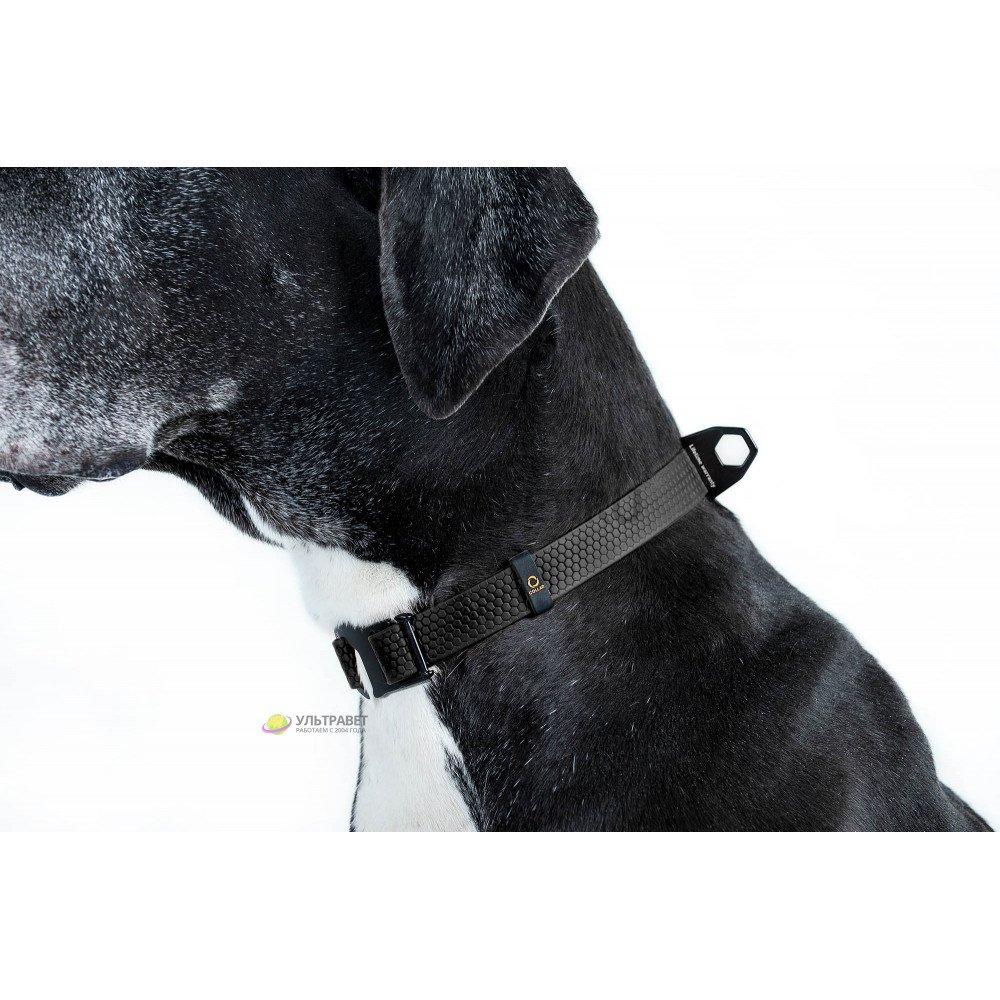 Ошейник EVOLUTOR (ЭВОЛЮТОР) самый прочный в мире, цвет черный (25 мм, ширина 25-70 см)