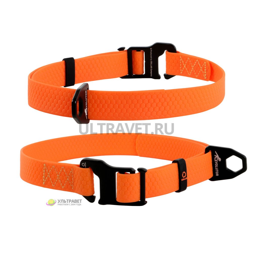 Ошейник EVOLUTOR (ЭВОЛЮТОР) самый прочный в мире, цвет оранжевый (25 мм, ширина 25-70 см)