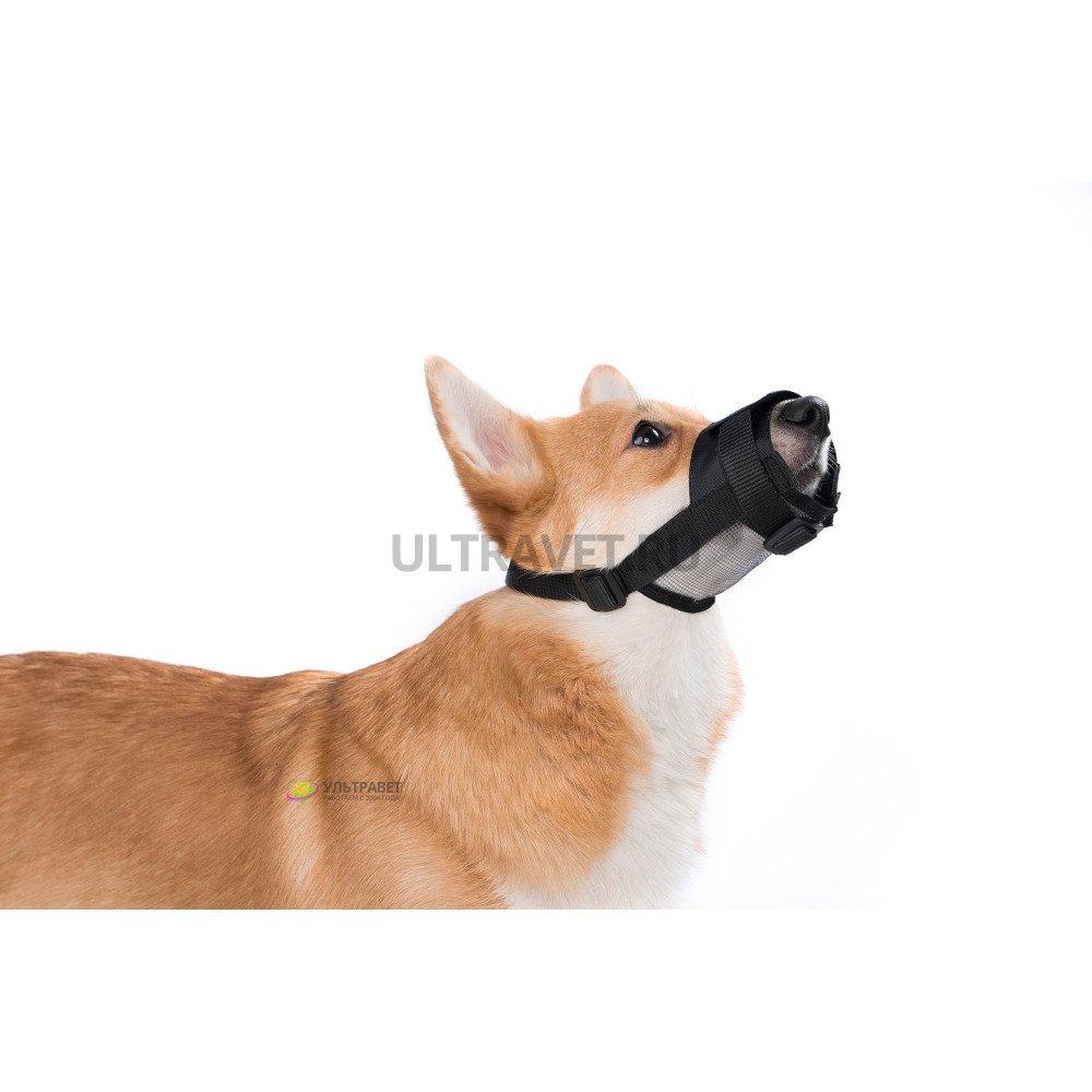 """Намордник """"Dog Extreme"""" нейлон регулируемый с сеткой, черный"""