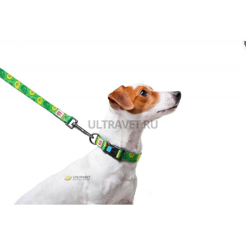 "Поводок WAUDOG Nylon для собак с рисунком ""Авокадо"", длина 122 см"