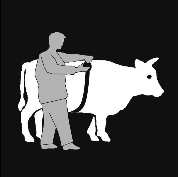 Обмер коров